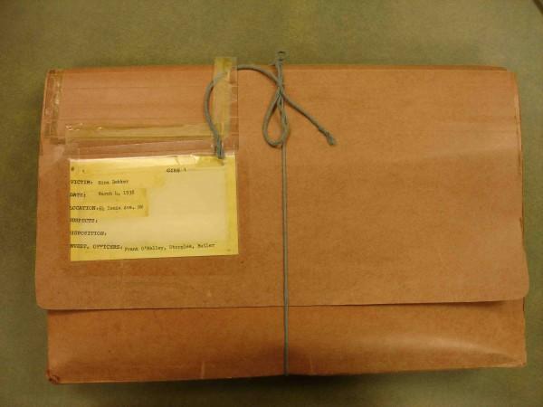 mina-dekker-case-file